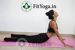 bhujangasana benefits in hindi