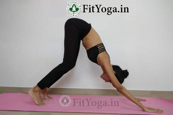 benefits of adho mukha svanasana