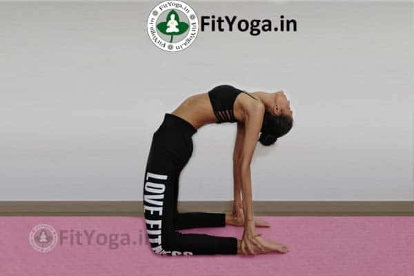 benefits of ustrasana