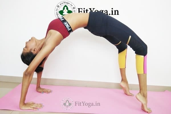 urdhva dhanurasana benefits in hindi