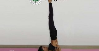 sarvangasana benefits in hindi