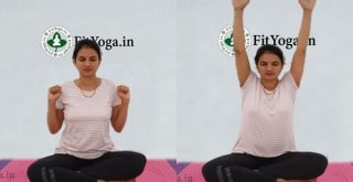bhastrika pranayama benefits in hindi
